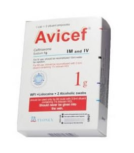 Antibiotics/Antiinfectives